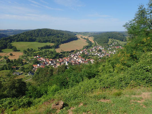 Rückblick auf Neckargerach