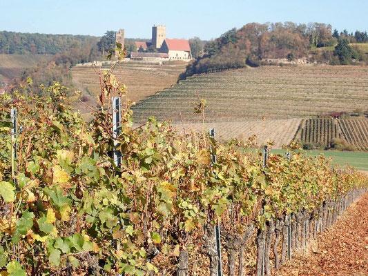 Im Hintergrund die Burg Neipperg