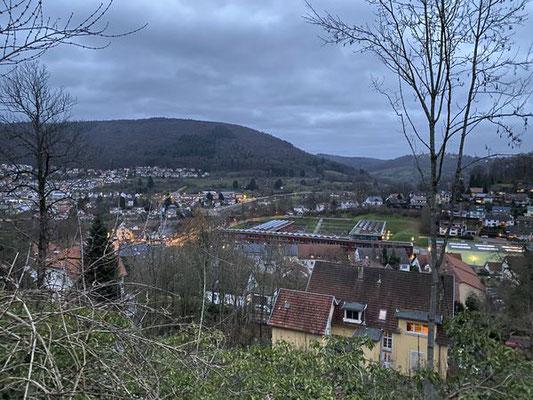 Blick von der Burgruine Reichenstein