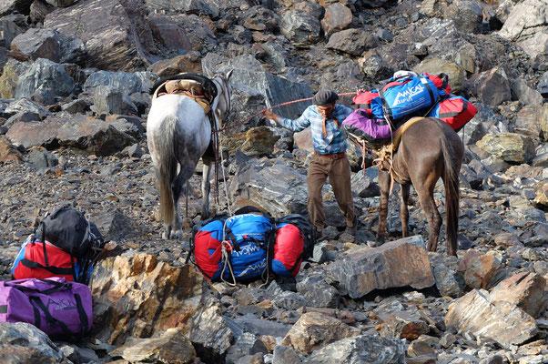 Transport der Ausrüstung mit Hilfe der Pferde