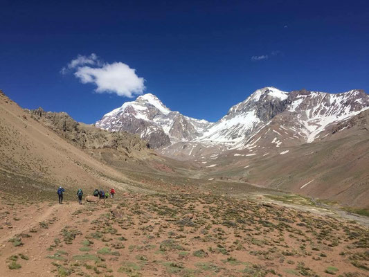 AMICAL alpin - Aconcagua Expedition (c) Dieter Weiß