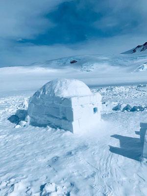 Gipfelerfolg am Mt. Vinson in der Antarktis, höchster Berg der Antarktis und einer der Seven Summits mit AMICAL alpin