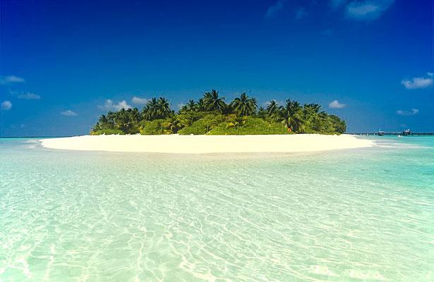Blick vom Wasser auf die ca. 220 x 240 Meter große (kleine) Insel