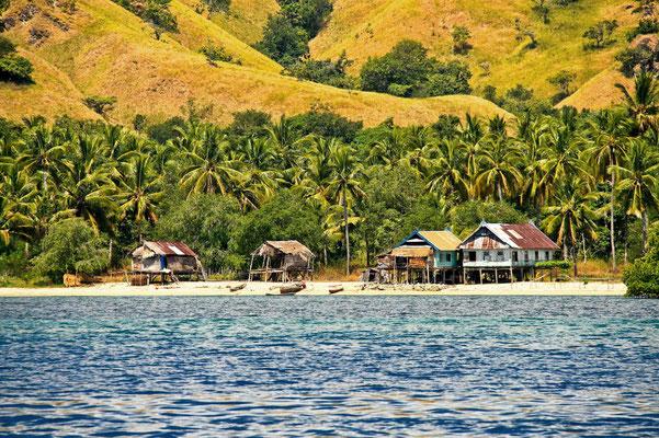 Auf den kleinen Inseln in der Flores See und an der Küste von Flores leben die Menschen in auf Stelzen erbauten Häusern und leben vor allem vom Fischfang und ein wenig Landwirtschaft