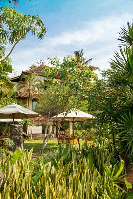 Sayan Terrace Resort in Ubud - gutes Preis-Leistungsverhältnis und direkter Nachbar des Four Seasons Hotel