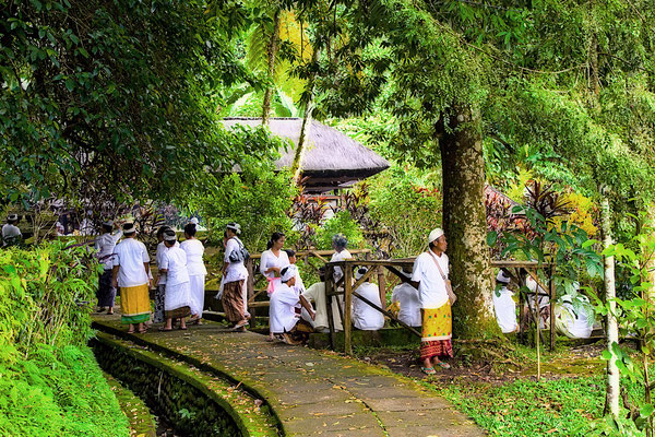 Pura Luhur Batukaru - Tempel im Dschungel
