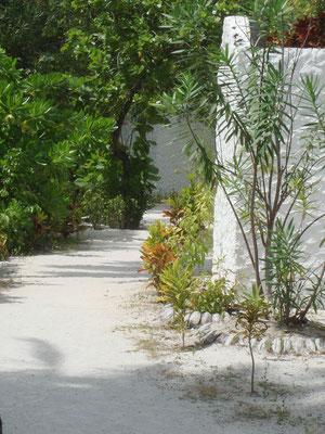 Weg im Inselinneren zu den Beach Bungalows