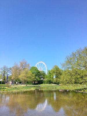 Planten un Blomen mit Blick auf das Riesenrad des Hamburger Doms.