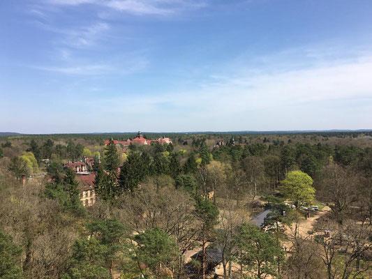 Von der Stahl- und Holzkonstruktion in den Baumwipfeln 20 Meter über dem Waldboden kann man die denkmalgeschützten Gebäude und die verwunschene Parkanlage von oben erkunden.