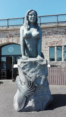 Die neue Meerjungfrau