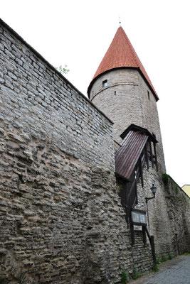 Die historische Stadtmauer