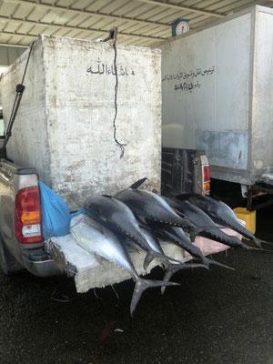 Muscat Fischmarkt