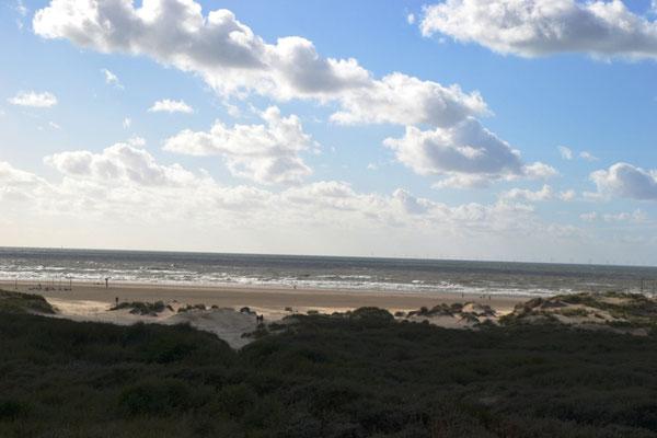 Naturschutzgebiet IJmuiden