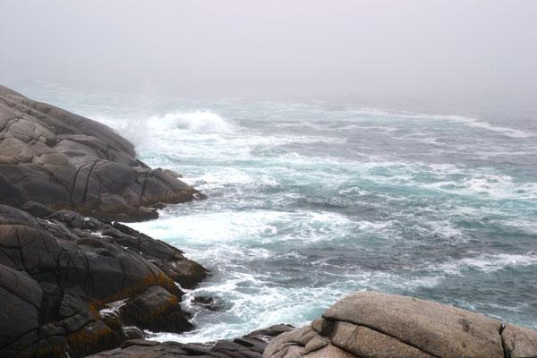 Atlantikküste at Peggys Cove