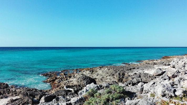 Im Punta Sur Eco Beach Park