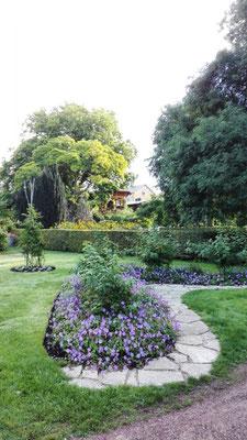 Botanischer Garten © Ben Simonsen