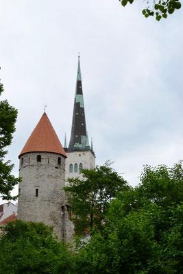 Langes Bein und St. Olai Kirche