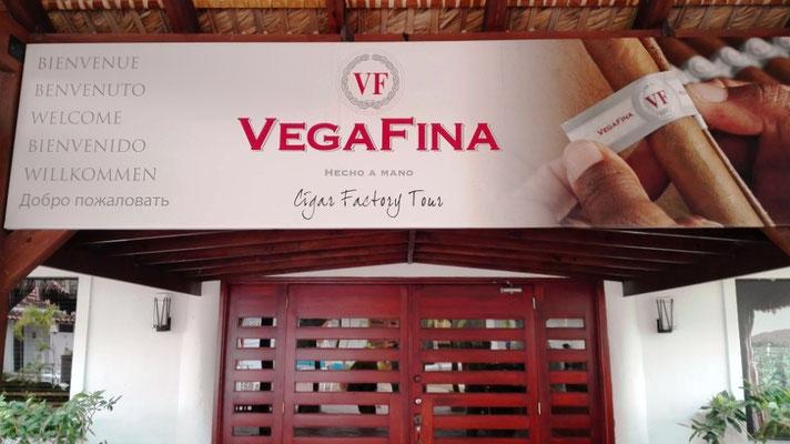 Vegafina © Ben Simonsen