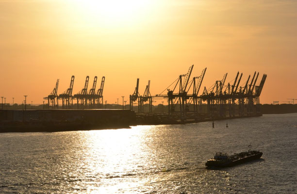 Krähne im Containerhafen