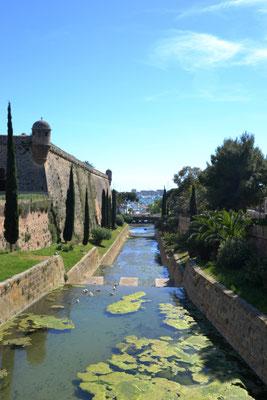 Kanal zum Hafen