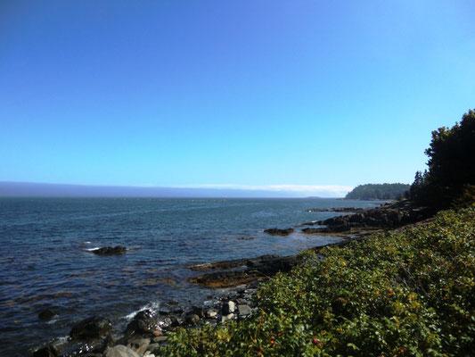 Atlantikküste von Bar Harbor