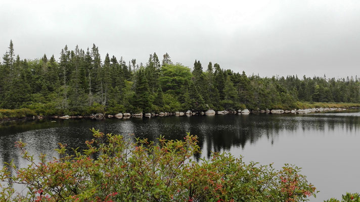 Kanadische Landschaft