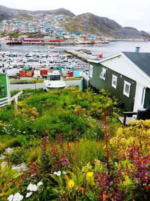 Hafen von Qarqortoq