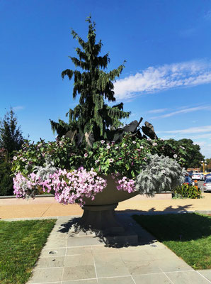 US Botanic Garden © Ben Simonsen