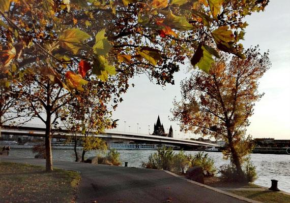 Donauinsel mit Blick zur Innenstadt © Ben Simonsen