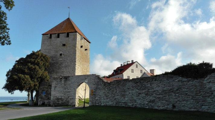 Stadtmauer mit Pulverturm © Ben Simonsen