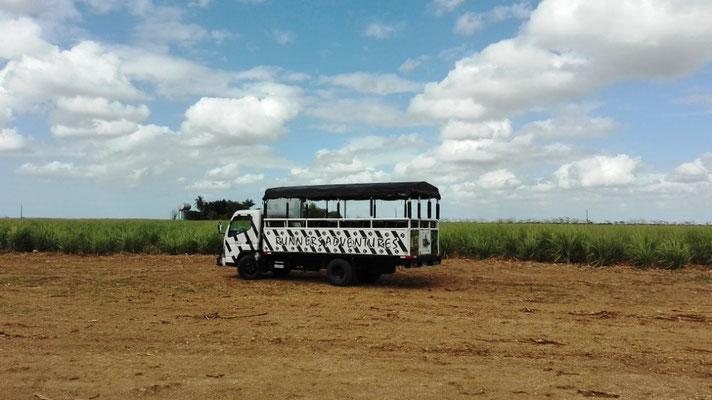 Offener Safaribus © Ben Simonsen