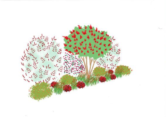 Jardin rouge - Aménagement de massif