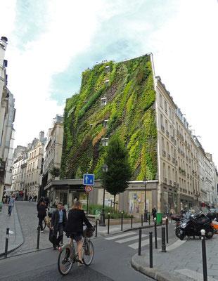 Paris, L'Oasis d'Aboukir