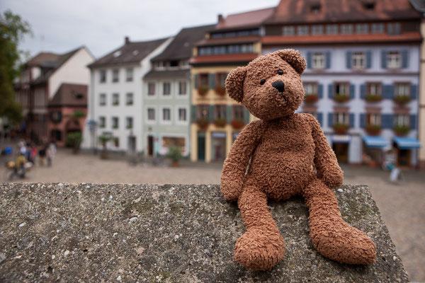 Hach, ein Mauerblümchen. Auf dem Augustinerplatz in Freiburg...