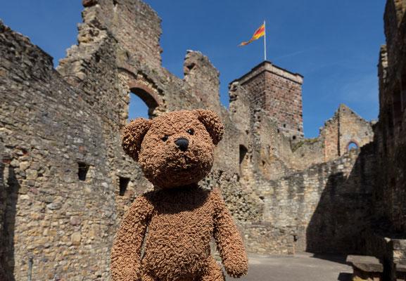 Die Burg ist ganz in der Nähe von Lörrach.