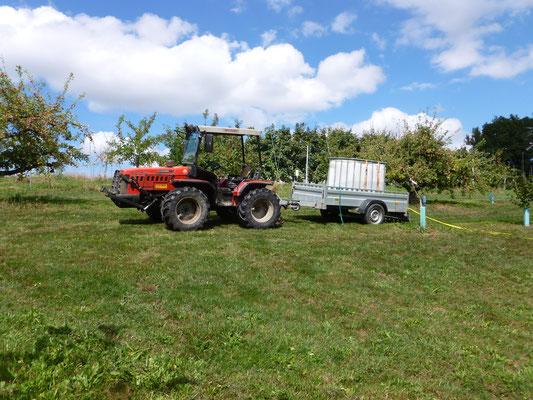 Wegen der grossen Trockenheit mussten wir die neu angepflanzten Haselnussbäume sehr häufig wässern.