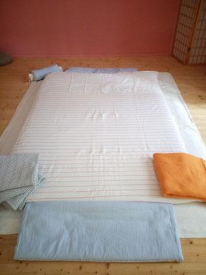 Massagen erfolgen auf einer Matte in der Praxis 1040 Wien, Preßgasse 18/4.