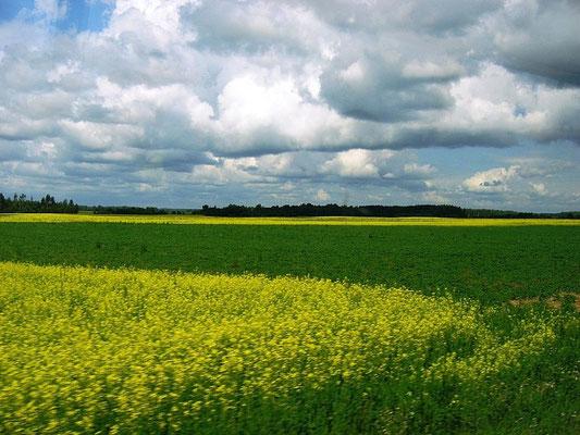 Эстония Раквере