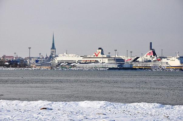 Берег в Таллинне