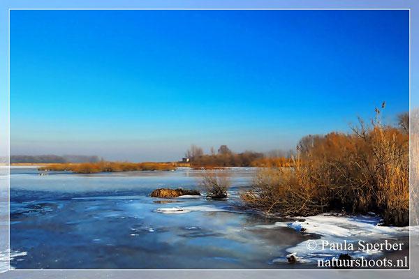 biesbosch in wintersfeer