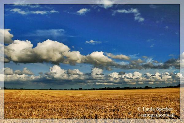 hollandse luchten in de polder
