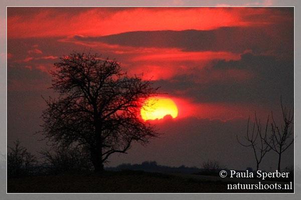 zonsondergang Elzas