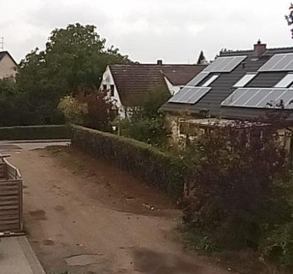 Zufahrt Siedlerweg Nr. 7 und Nr. 9 - Hecke nach dem Schnitt