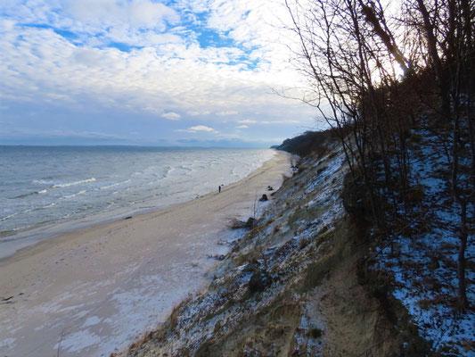 Wenig Menschen im Lockdown am Strand, aber viele Wasservögel auf der Winterflucht über die Ostsee. Foto: NABU Insel Usedom, B. Schirmeister