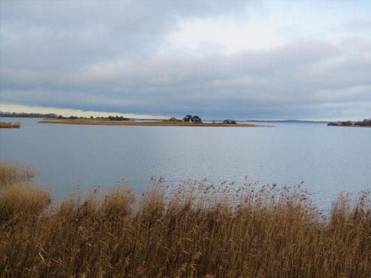 Achterwasser bei Neppermin mit den Seevogelinseln Böhmke und Werder (Foto: NABU Insel Usedom/Bernd Schirmeister)
