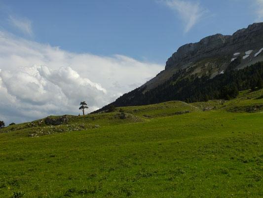 Vallon de Combeau sur les Hauts Plateaux