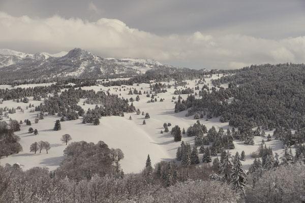 Les Hauts Plateaux l'hiver