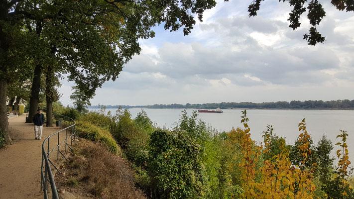 Elbwanderweg Wedel im Herbst, Blick auf die Elbe