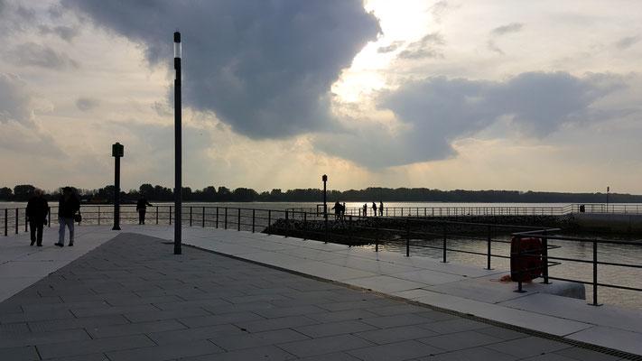 Neuer Wedeler Hafen im Gegenlicht