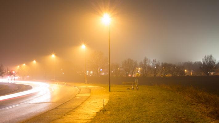Schulauer Straße bei der Batavia im Nebel